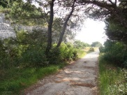 Rovinj running path 2