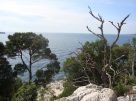 Rovinj running path 6